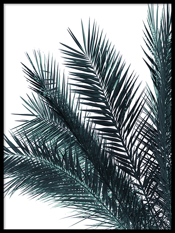 Blue Palm Leaves Print - PRRRINT