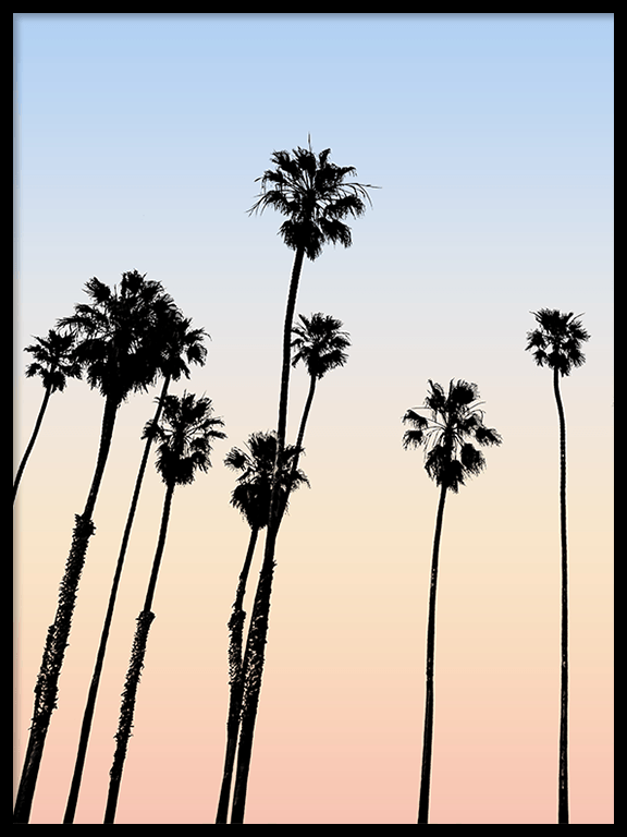 Cali Palm Trees Wall Art Print - PRRRINT