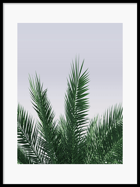 Calm Palm Leaves No3 Wall Art Print - PRRRINT