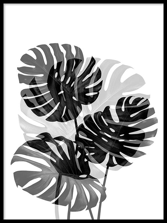 Double Monstera No2 Wall Art Print - PRRRINT