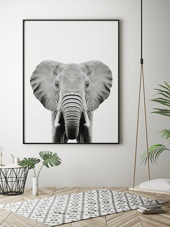 Elephant Wall Art Print in Black and White - PRRRINT