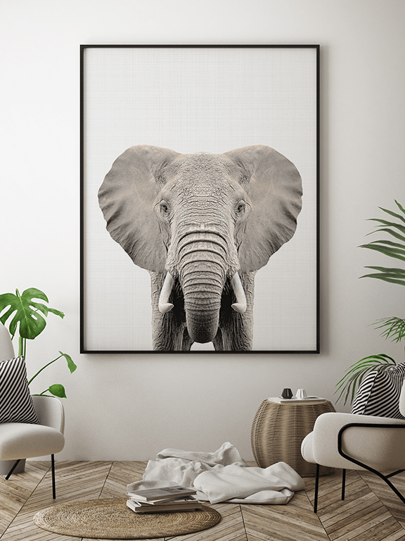 Elephant Wall Art Print - PRRRINT