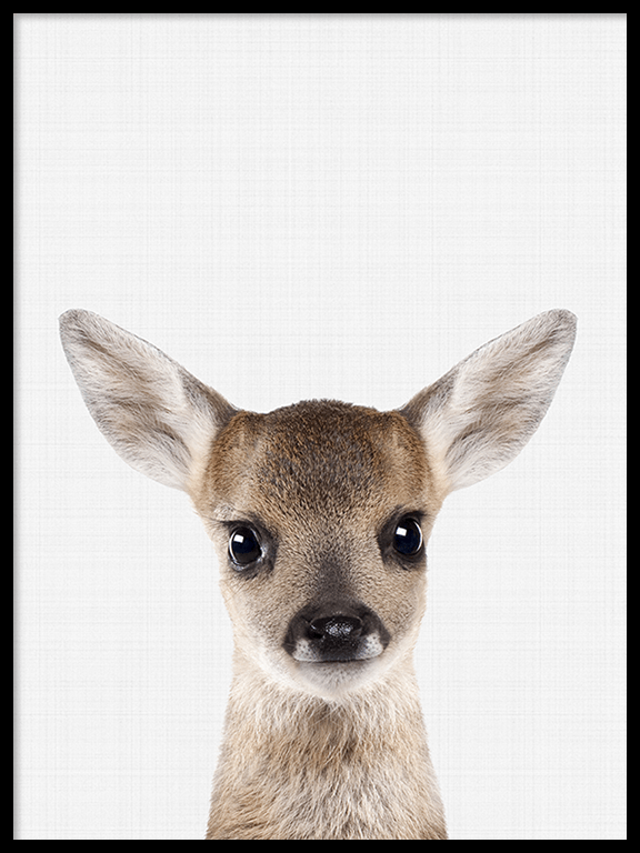 Fawn Wall Art Print - PRRRINT