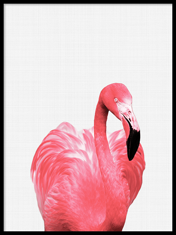Flamingo Wall Art Print - PRRRINT