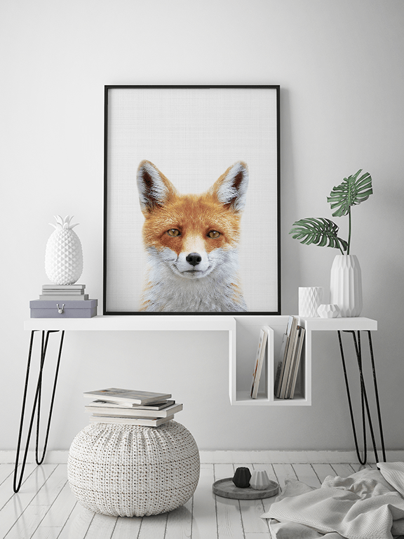 Fox Photo Wall Art Print - PRRRINT