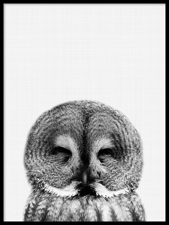 Owl Wall Art Print in Black and White - PRRRINT