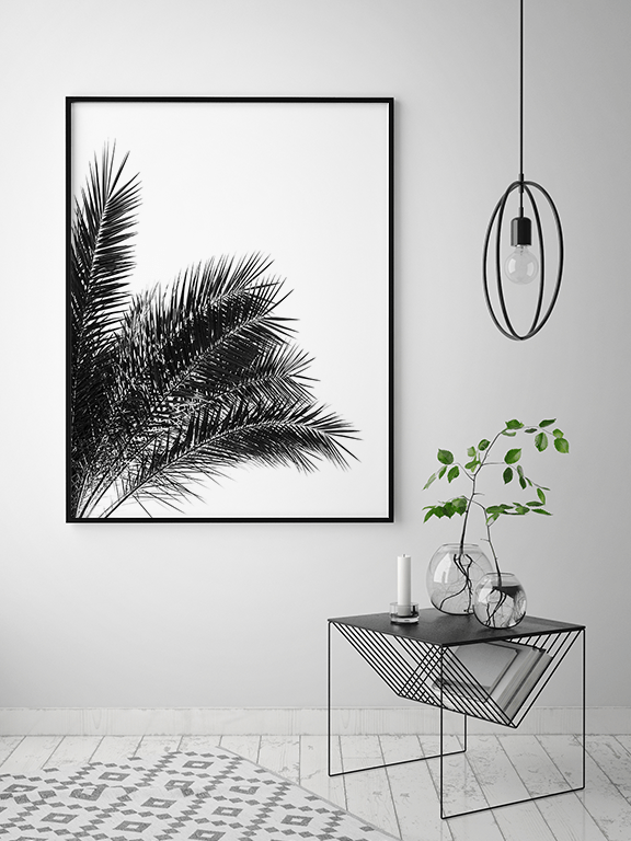 Palm Leaves No3 Wall Art in Black and White - PRRRINT
