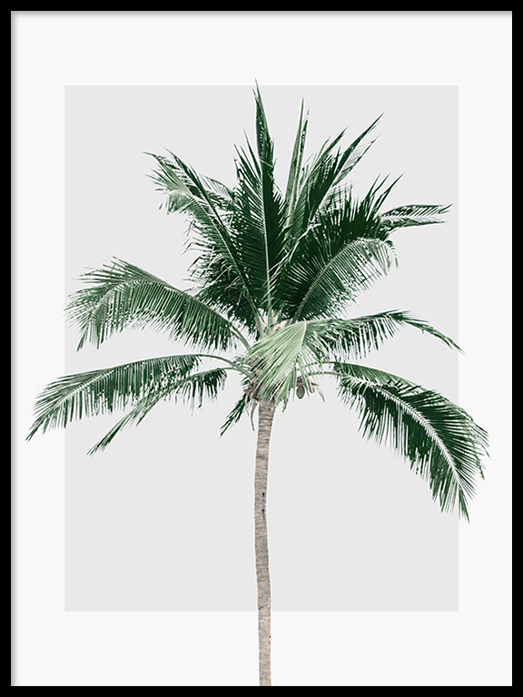 Palm Tree Wall Art Print in Gray - PRRRINT