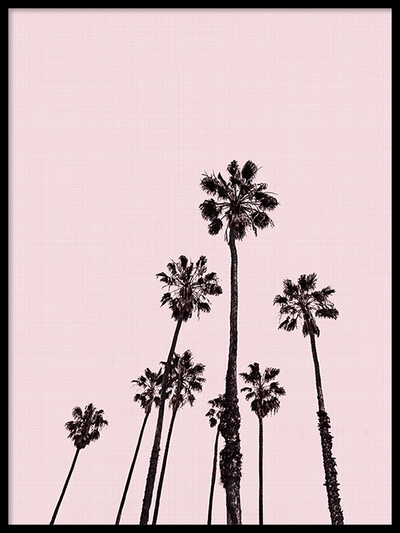 Palm Trees in Pink Wall Art - PRRRINT