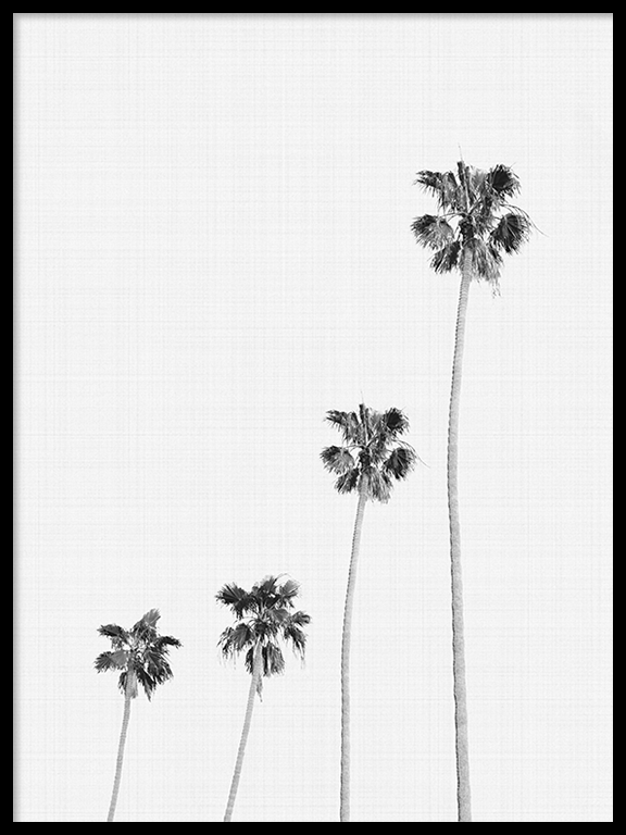 Palm Trees Wall Art - PRRRINT