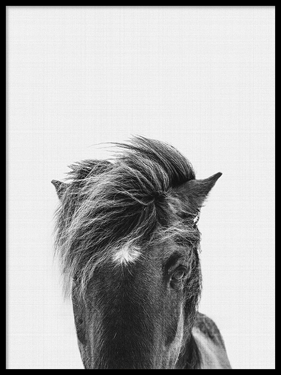 Pony Wall Art Print in Black and White - PRRRINT