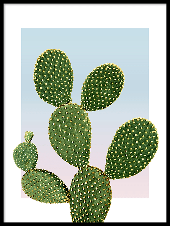 Sunset Cacti No3 Wall Art Print - PRRRINT