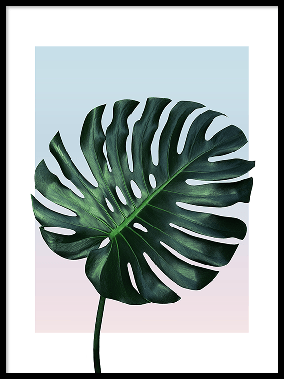 Sunset Monstera Leaf No3 Wall Art Print - PRRRINT