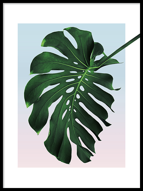 Sunset Monstera Leaf No5 Wall Art Print - PRRRINT