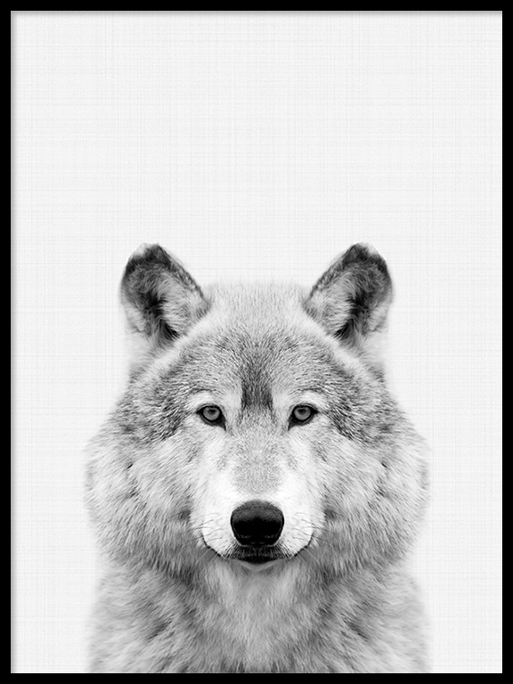 Wolf Wall Art Print in Black and White - PRRRINT