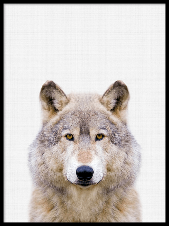 Wolf Wall Art Print - PRRRINT