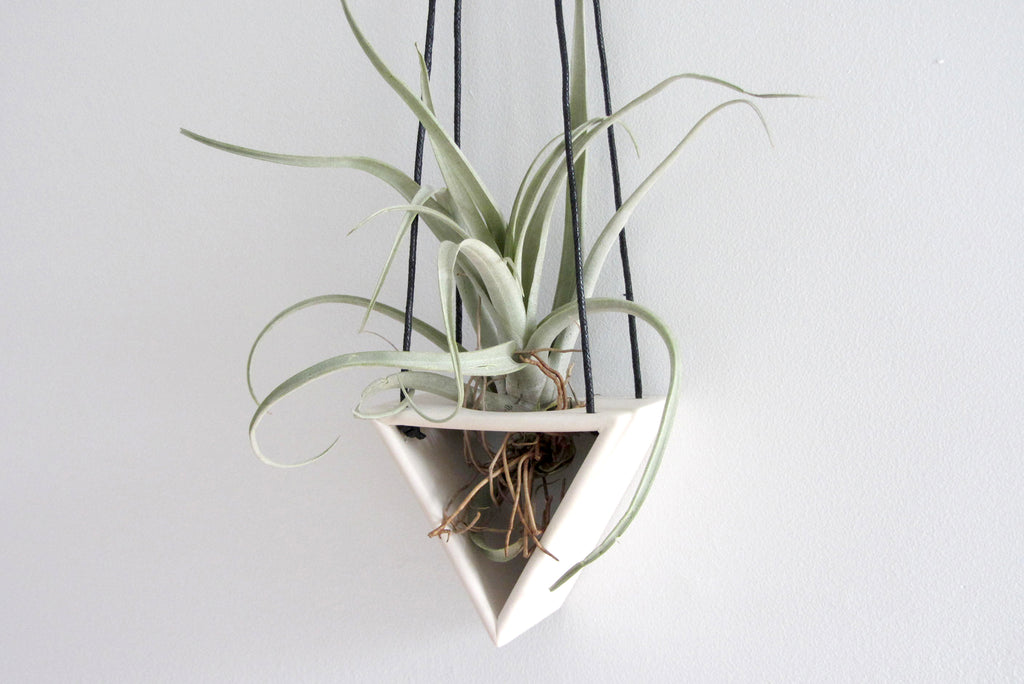 Triangle Air Plant Hanger