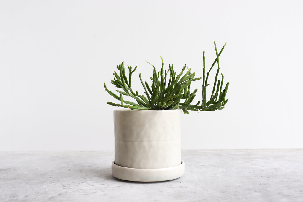 Round Pinched Planter with Plate - Seafoam