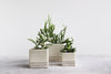 Herringbone Square Planter - Seafoam