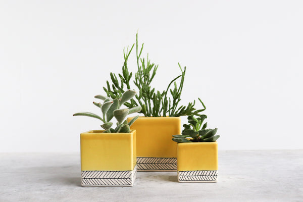 Herringbone Square Planter - Daybreak