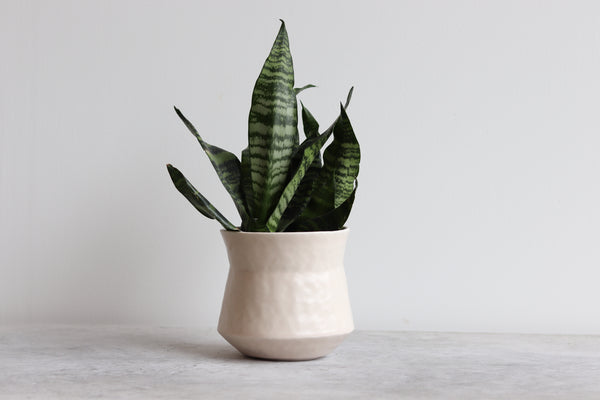 Ebb & Flow Pinched Planter - Summer Sweet