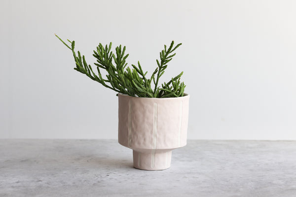 Pinstripe Planter - Summer Sweet