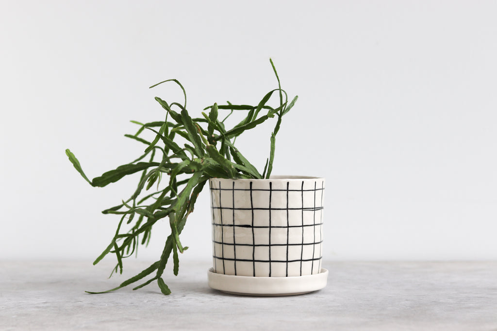 Round Pinched Planter with Plate - Grid