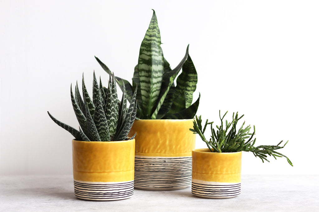 Round Pinched Planter with Stripes - Daybreak