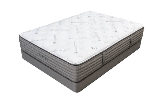 "Cedar Plush Luxury Organic 13"" Plant Based Foam Mattress"