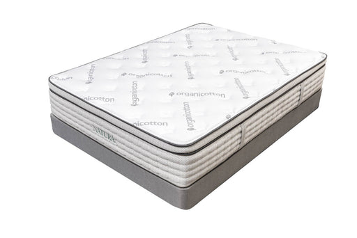 Maple Euro Top Plush Organic Talalay Latex Hybrid Mattress