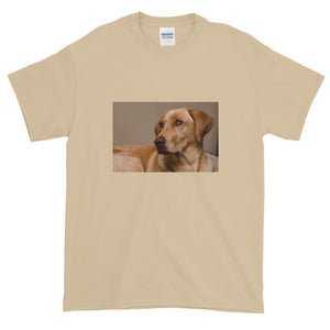 Short-Sleeve Yellow Labrador Tshirt