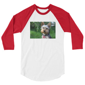 3/4 Sleeve Outdoor Yorkshire Terrier Tshirt Raglan
