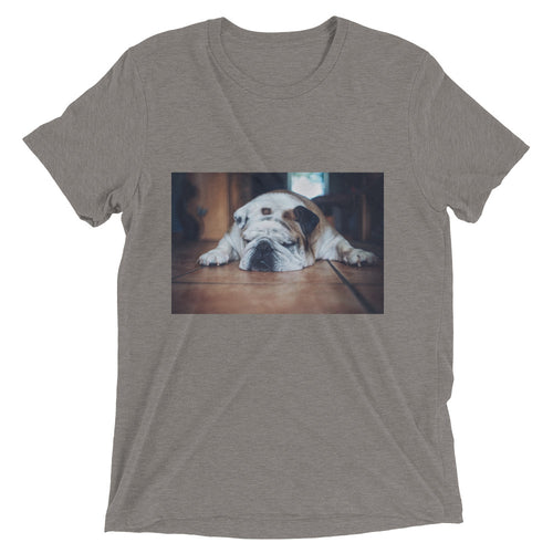 Short sleeve Sleeping Bulldog Tshirt