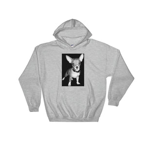 Hooded Teddy the Terrible Chihuahua Sweatshirt