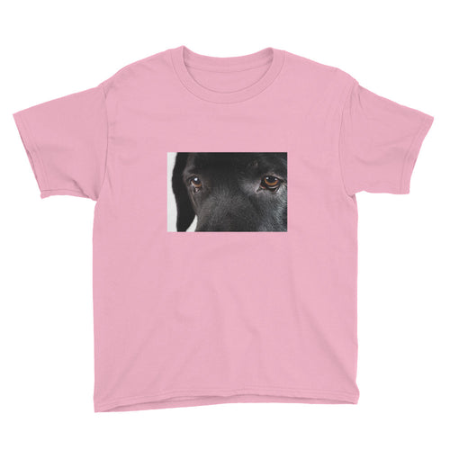 Youth Short Sleeve Black Labrador Tshirt