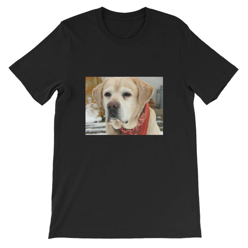 Short-Sleeve Unisex Jespah the Yellow Labrador Tshirt