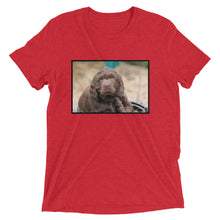 Load image into Gallery viewer, Short Sleeve Cocker Spaniel t-shirt