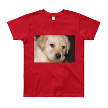 Load image into Gallery viewer, Youth Short Sleeve Yellow Labrador Puppy Tshirt