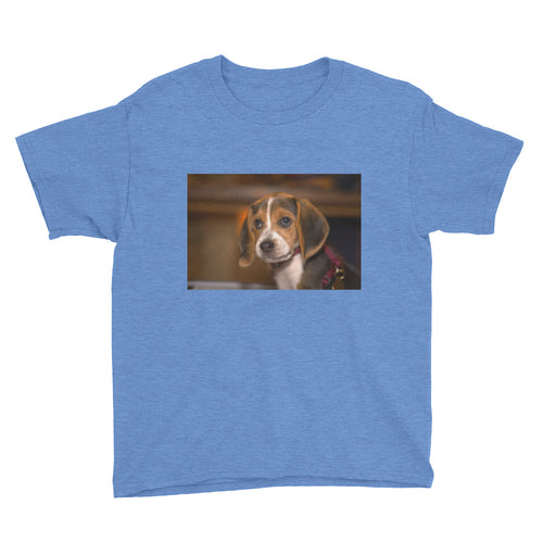 Youth Short Sleeve Beagle Puppy Tshirt