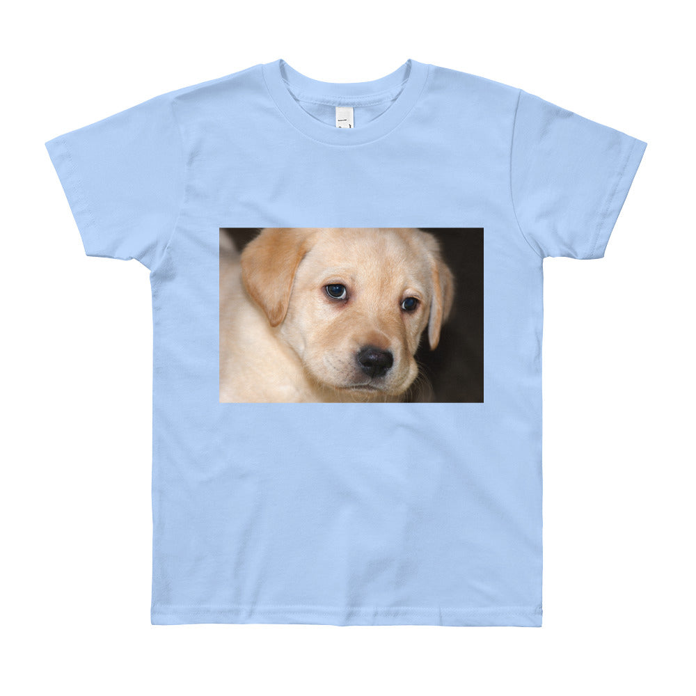 Youth Short Sleeve Yellow Labrador Puppy Tshirt