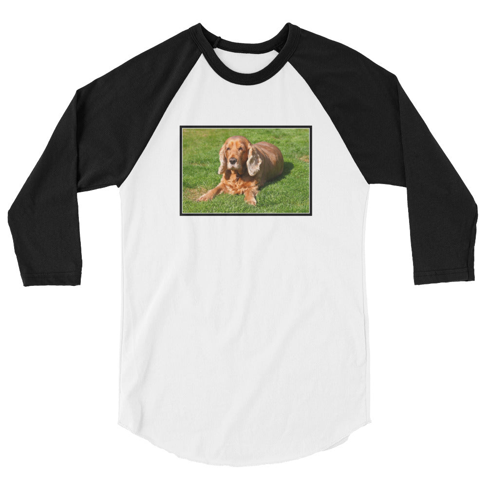 3/4 Sleeve Outdoor Cocker Spaniel Tshirt Raglan