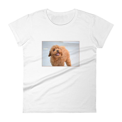 Women's short sleeve Poodle Puppy Tshirt