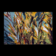 "Canvas Wrap ""Kelp Forest (3464048705636)"