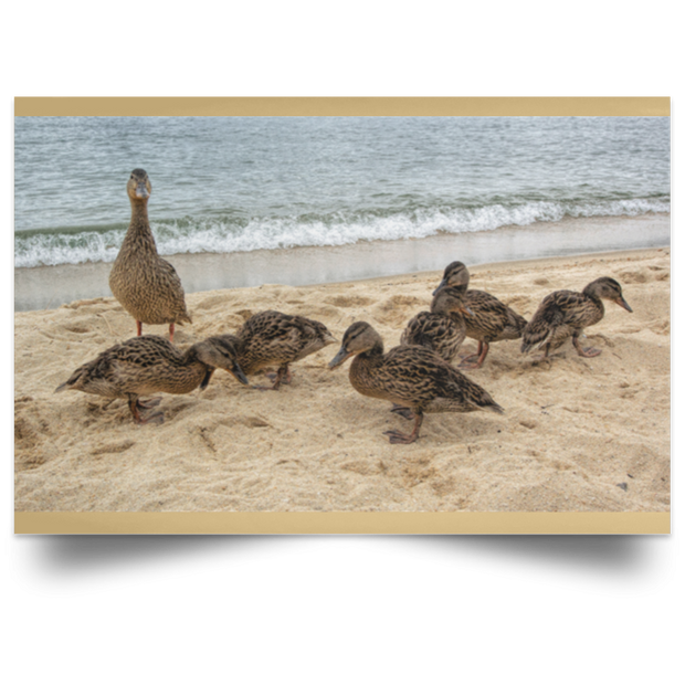 Satin Poster Goose and Goslings Tan / 18 x 12 Poster