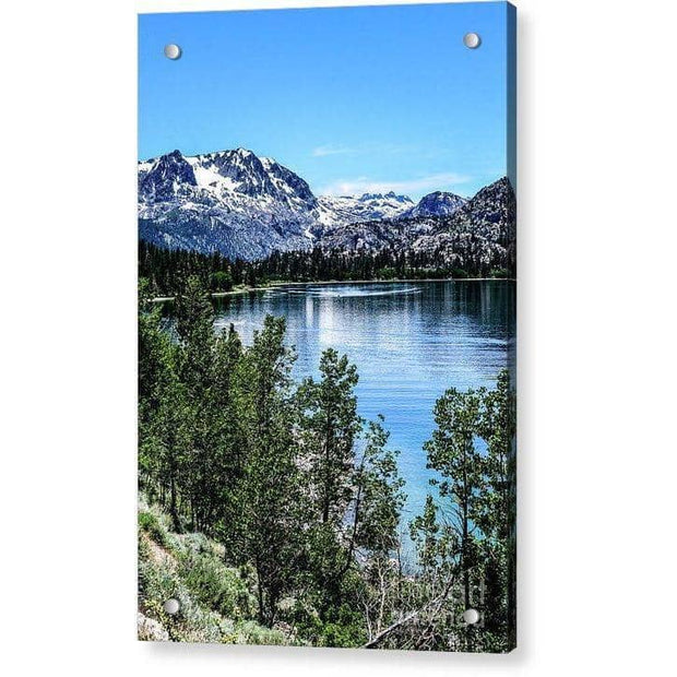 "Acrylic Print ""June Lake Portrait"""