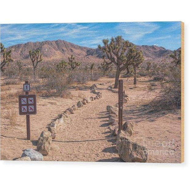 Wood Print Trailhead 10.000 x 6.625 Wood Print