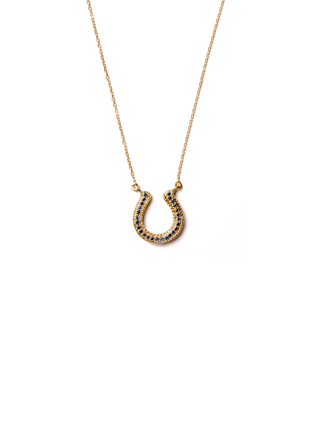 Horseshoe Necklace with Blue Sapphires