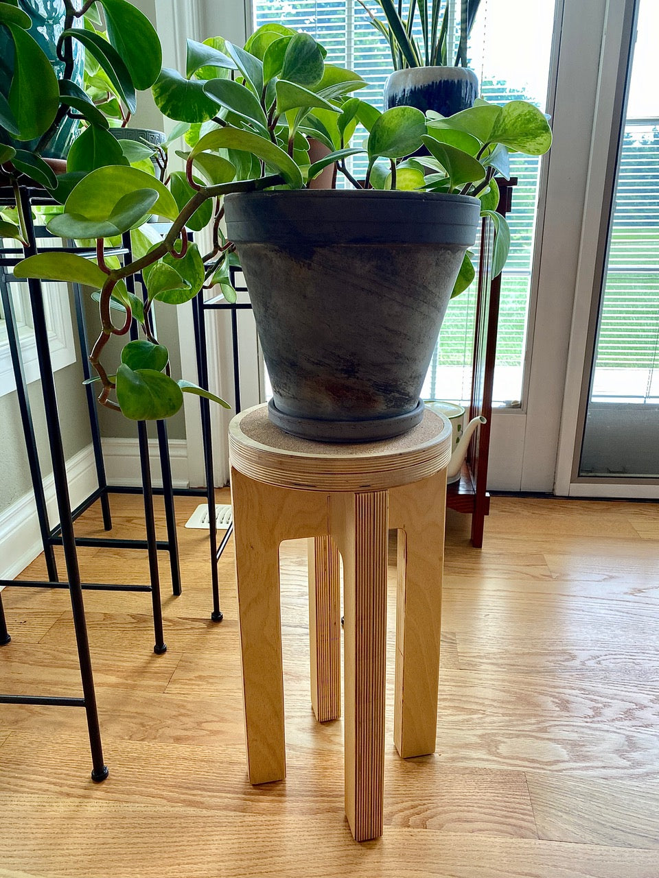 Baltic Birch Plant Stand