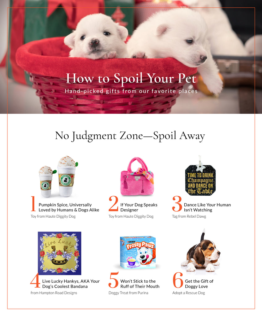 Gifts for Your Dog