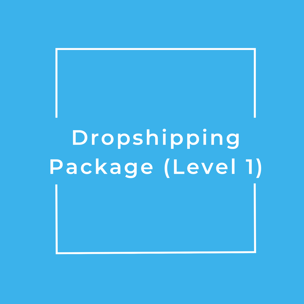 Dropshipping Package (Level 1)